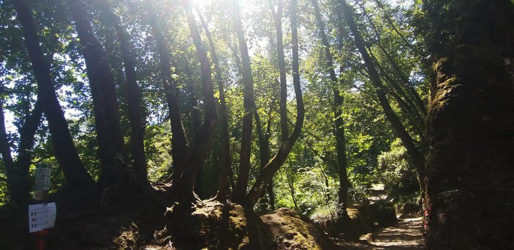 Portofino Regional Natural Park