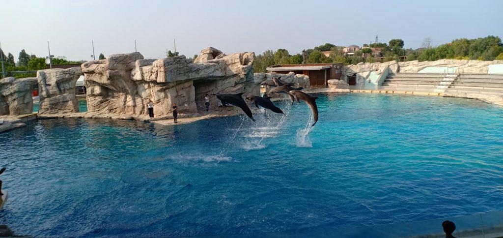 """""""Oltremare"""" Aquarium"""